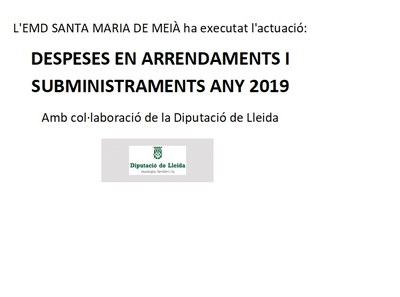 Despeses en arrendaments i subministraments any 2019